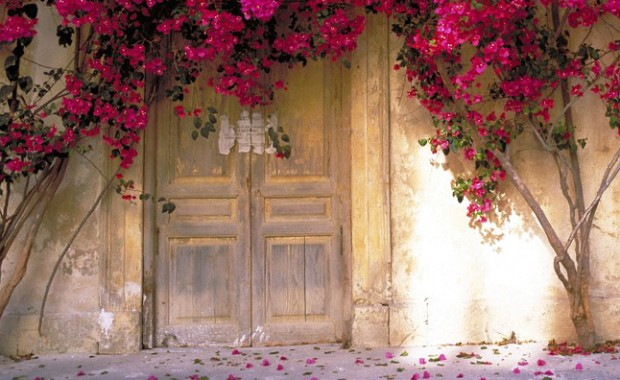 fen-shui-dveri
